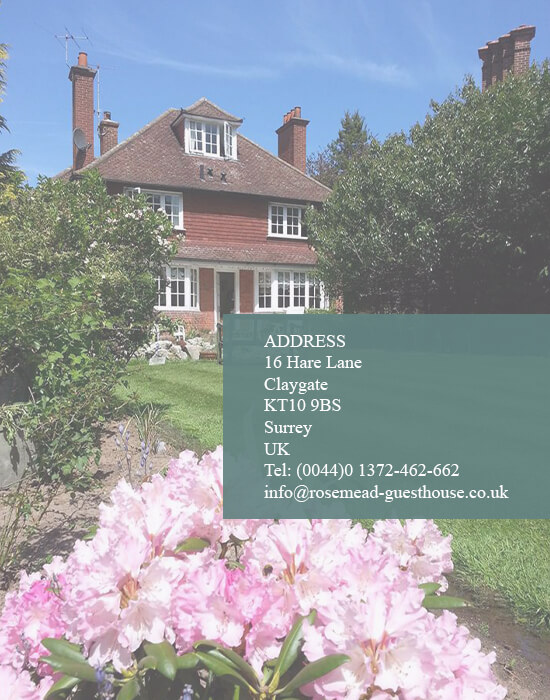 top guest house in claygate